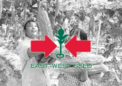 East-West Seed improves crop inspection reports in remote areas