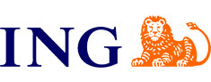 Partners : ING| Luminix