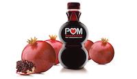 Partners : POM | Luminix